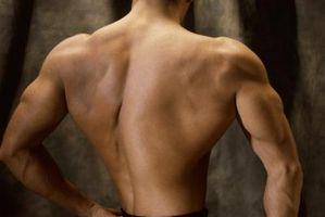 Come guadagnare peso come un Bodybuilder