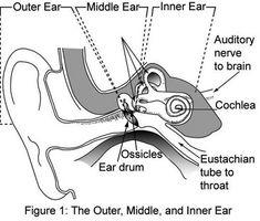 Infezioni dell'orecchio esterno
