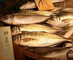 Effetti di olio di pesce su capelli