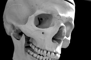 Quali sono le cause del dolore nel Linfonodi & Jaw?