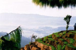 Conservazione della fauna selvatica nei parchi nazionali in Nepal