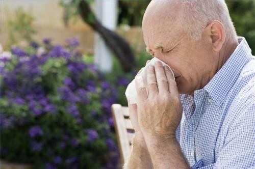 Come prendere Loratadine per le allergie