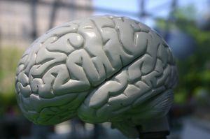 Quali sono le cause di aneurismi cerebrali?