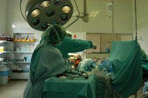 Organo & Tissue Donation per il trapianto