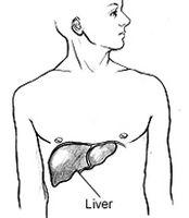Come identificare i tipi di epatite