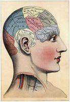 Come stimolare potenziamento del cervello negli adulti