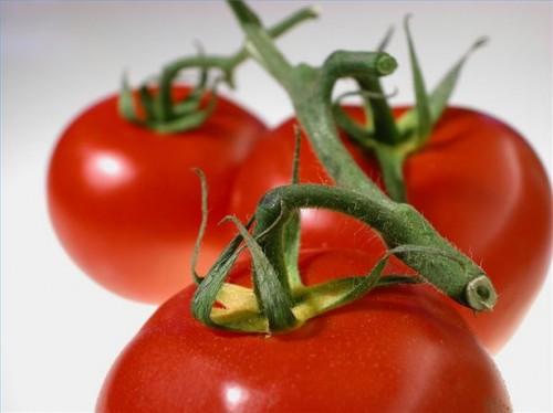 Come sapere i sintomi di allergia pomodoro