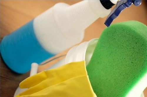 Come trovare la sicurezza per la casa Detergenti per Living non tossico