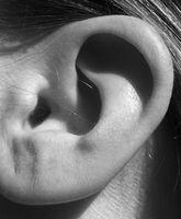 Parassiti orecchio umano causando dolore