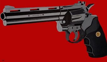 Come identificare una Magnum 500