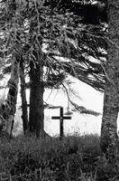 Leggi in materia di Dead Horse Burial