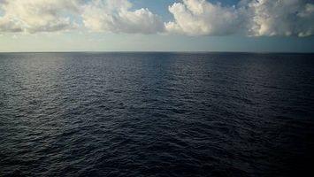 Cosa succede se si beve acqua di mare?