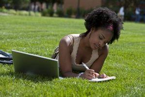 Erbe per aiutare con lo studio e Concentrazione
