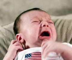 Allergie & Birds Infant