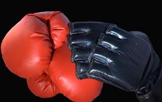 Come perdere peso rapidamente per Boxe