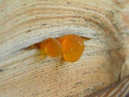 Perché utilizzare Pine Tar Sapone per tigna e bianche macchie della pelle?