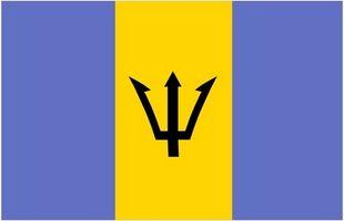 Norme doganali Barbados