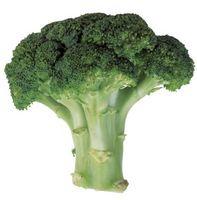 Posso mangiare staminali di Broccoli?