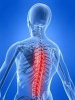 Patologie del sistema nervoso