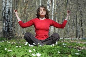 Come Seguire una Sciamanesimo Lifestyle