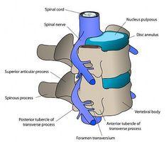 Come fare casa cervicale trazione del collo