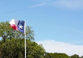 Requisiti Medicaid in Texas