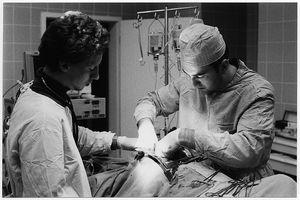 Qual è la differenza tra Triple e Quadruple Bypass Surgery?