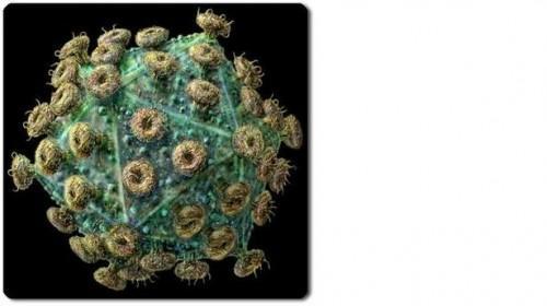 Come si contrae l'HIV?