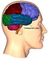 Cause di epilessia del lobo temporale