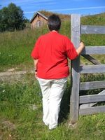 Come può una persona in sovrappeso perdere peso?