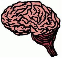 Gli effetti del diabete sul cervello