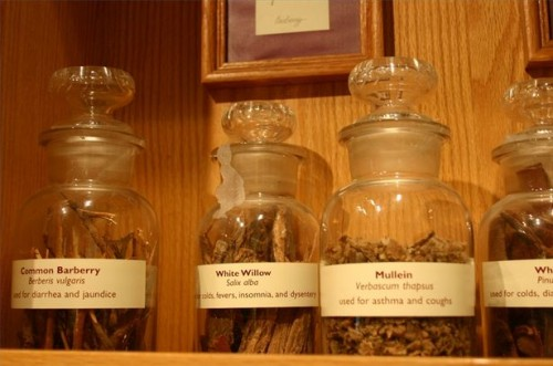 Alternative naturali per la terapia ormonale sostitutiva