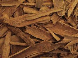 Le differenze tra corteccia di cannella olio essenziale di cannella e foglie Olio Essenziale