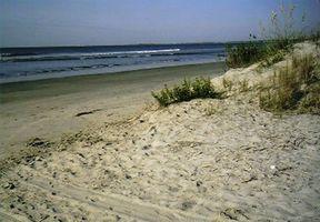 Come trascorrere una giornata su Kiawah Island, Carolina del Sud