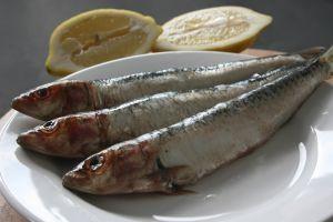 Olio di pesce come trattamento per Mono