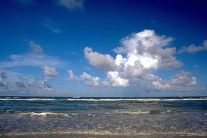 Motel economici Vicino alla spiaggia a Ft.  Lauderdale