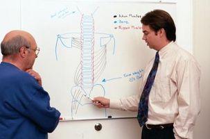 Segni e sintomi di cancro alle ossa della colonna vertebrale