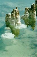 Modi che i dilettanti possono usare minerali del Mar per cose diverse