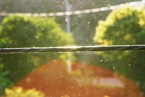 Come curare gli acari della polvere