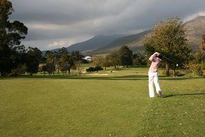 Informazioni sul Pro V1 pallina da golf Titleist