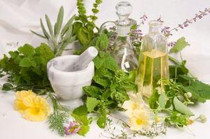 Come curare Indigestione con le erbe