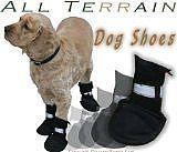 Come proteggere piedi del vostro cane