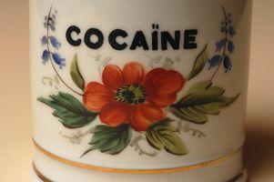 Quali sono i vantaggi di foglie di coca?