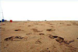 Come funziona un mercatino delle pulci di sabbia Bite?