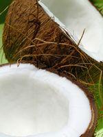 Effetti negativi dell'utilizzo di olio di cocco
