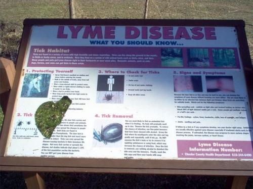 I sintomi di Lyme Malattia di lungo termine
