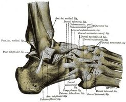 Come curare un crampo dita dei piedi