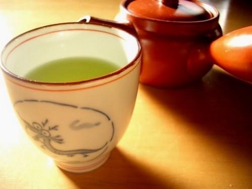 Trattamenti a base di erbe menopausa