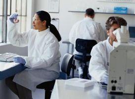 Procedure operative standard per un laboratorio medico microbiologia