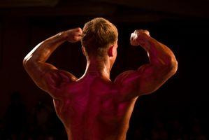 Consigli dieta equilibrata per il body building